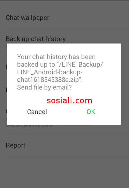 backup obrolan chat ke email